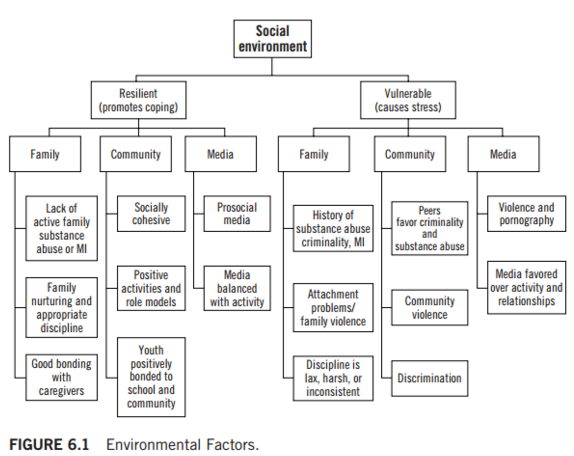 Environmental Factors Affecting Youth Violence